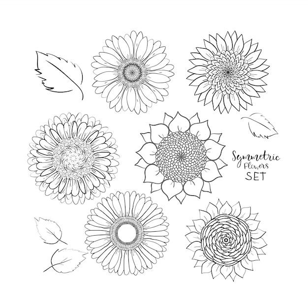 Floral symmetrische sommerblumen gesetzt. hand gezeichnete gekritzelblume. umriss vektor-illustration Premium Vektoren