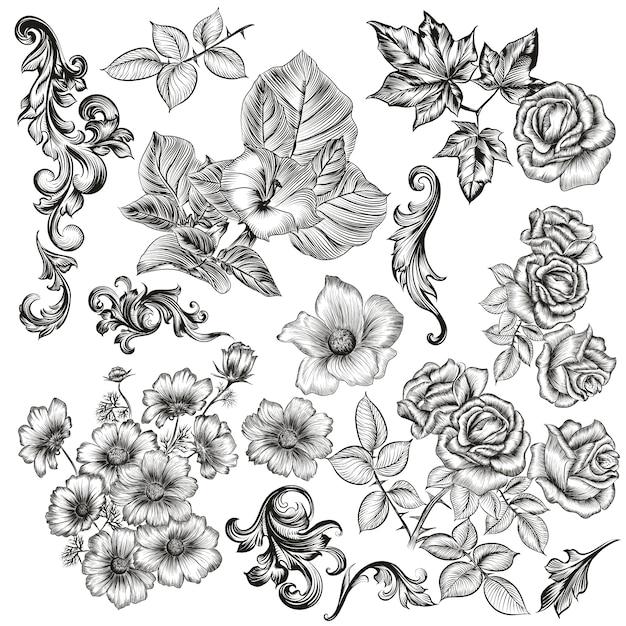 Florale elemente sammlung Premium Vektoren
