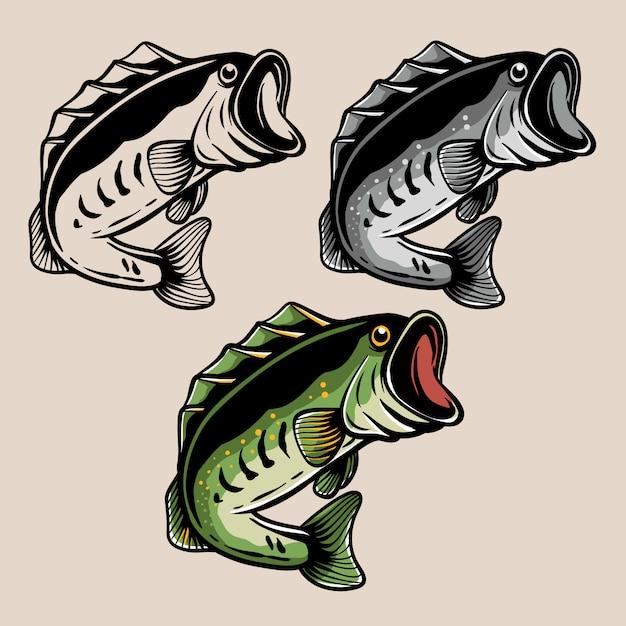 Forellenbarsch-fischillustration Premium Vektoren