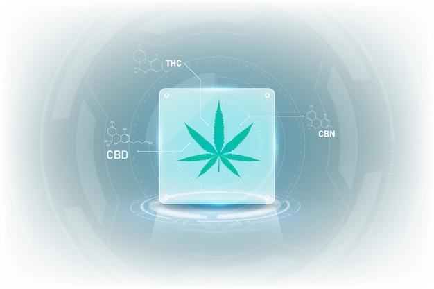 Formel der molekülstrukturchemie für medizinisches cannabis mit tetrahydrocannabinol Premium Vektoren
