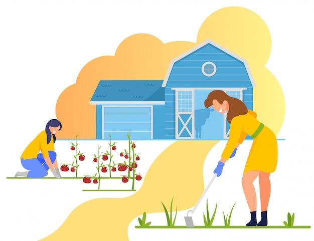 Frauen-landwirt-unkraut und sorgfalt für tomaten im garten Premium Vektoren