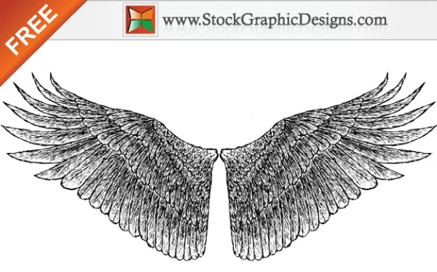 free hand drawn vector fl gel download der kostenlosen vektor. Black Bedroom Furniture Sets. Home Design Ideas