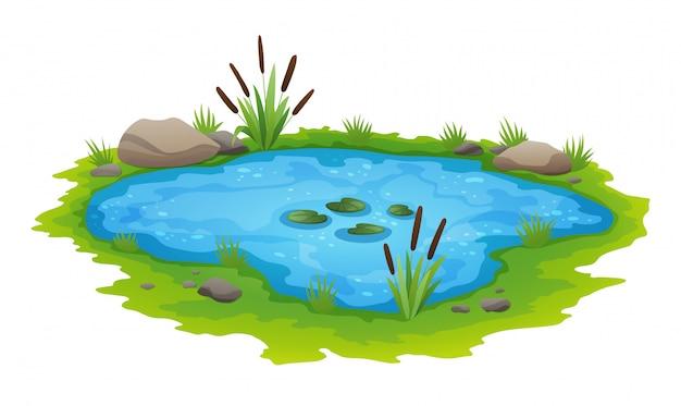 Freilandszene des natürlichen teichs. kleiner blauer dekorativer teich lokalisiert auf weiß, see pflanzt naturlandschaftsfischenplatz. landschaft von natürlichem teich mit blumenblüte. grafikdesign für frühlingsjahreszeit Premium Vektoren