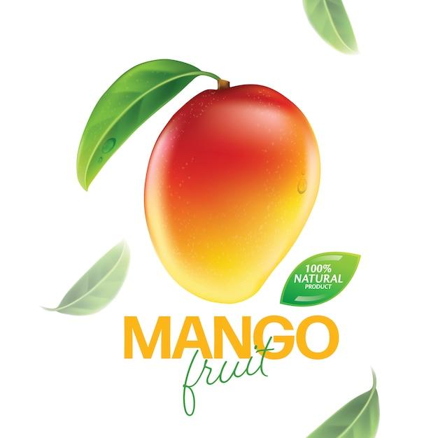 Frische mango mit scheiben und blattillustration Premium Vektoren