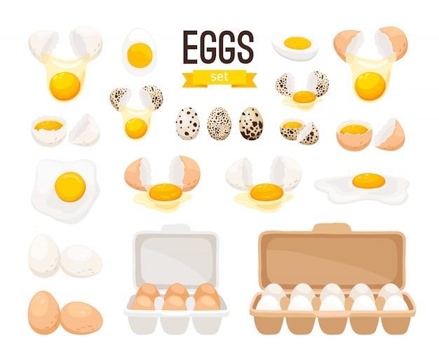 Frische und gekochte eier Premium Vektoren