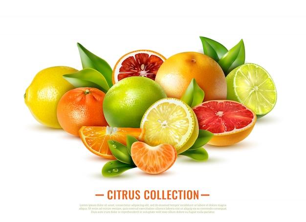 Frische zitrusfruchtsammlung auf weiß Kostenlosen Vektoren