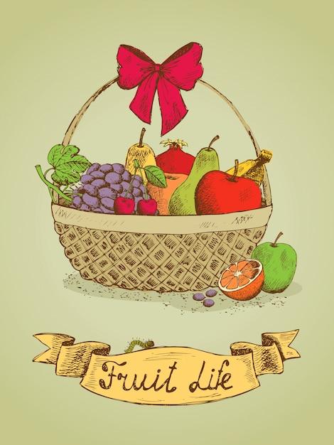 Fruchtlebengeschenkkorb mit bogenemblem Kostenlosen Vektoren