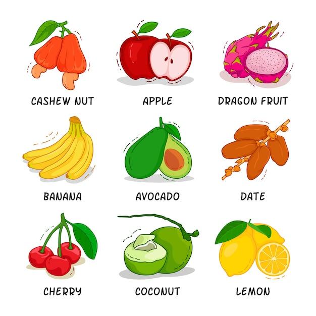 Früchte sammlung Premium Vektoren
