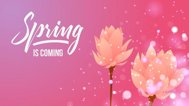 Frühling und blumenhintergrund Premium Vektoren