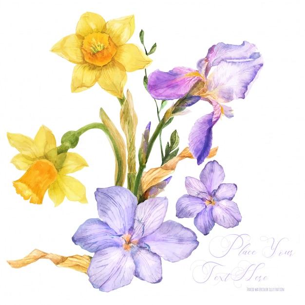 Frühlingsaquarellblumenstrauß mit frühlingsblumen Premium Vektoren
