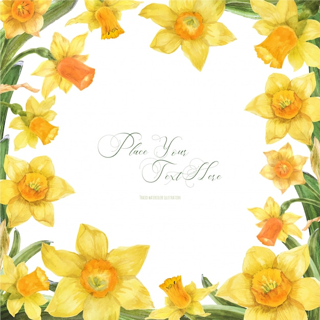 Frühlingsaquarellrahmen mit narzissenblumen Premium Vektoren