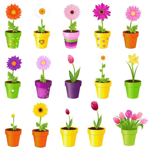 Frühlingsblumen in töpfen, auf weißem hintergrund, illustration Premium Vektoren