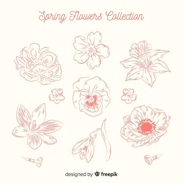 Frühlingsblumen-sammlung Kostenlosen Vektoren
