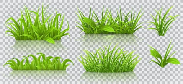 Frühlingsgras 3d lokalisiert Premium Vektoren