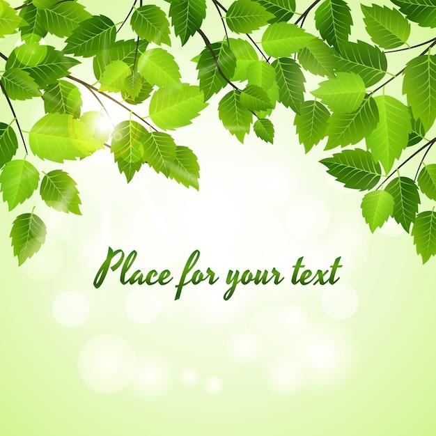 Frühlingshintergrund mit grünen vektorblättern, die als oberer rand über einem funkelnden bokeh des sonnenlichts mit copyspace für ihren text angeordnet sind Kostenlosen Vektoren