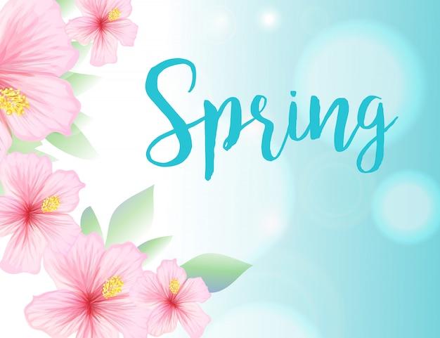 Frühlingsillustration mit blumen des blauen himmels und des hibiscus Kostenlosen Vektoren