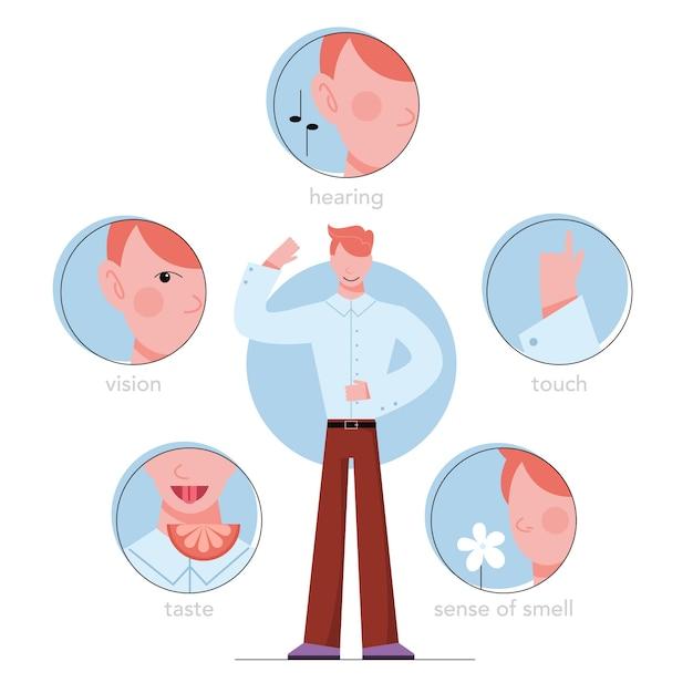 Fünf arten des menschlichen sinnes. sehen durch das auge, riechen mit der nase, schmecken mit der zunge. sinneswahrnehmung durch handberührung. illustration Premium Vektoren