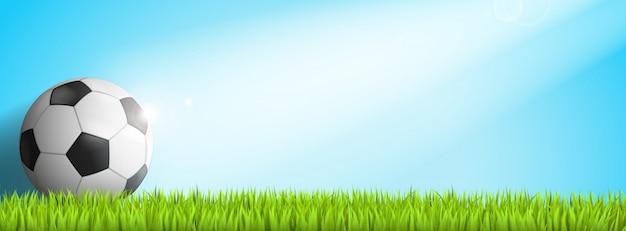 Fußball im gras mit sonnenschein darauf Premium Vektoren