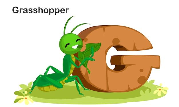 G für grasshopper Premium Vektoren