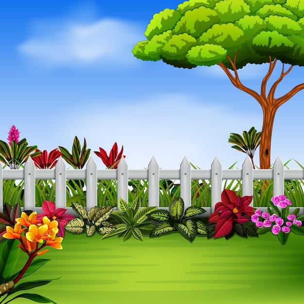 Garten mit dem fance und blumen Premium Vektoren