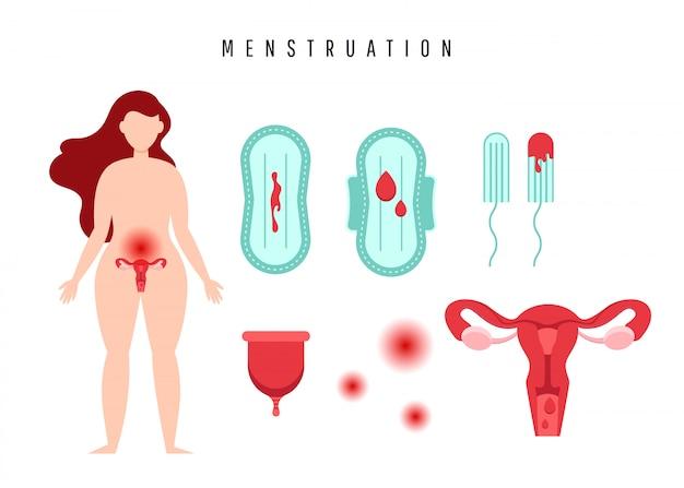 Gebärmutter mit eierstock, tupfern, dichtung, menstruationstasse und blutstropfen. Premium Vektoren