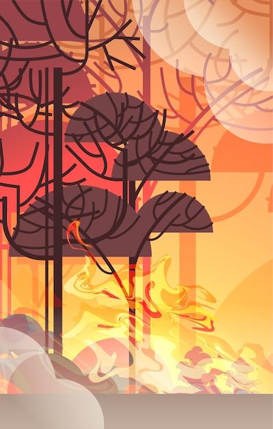 Gefährliches verheerendes buschfeuer entwicklung trockenes holz brennende bäume konzept der globalen erwärmung der naturkatastrophe intensive orange flammen vertikal Premium Vektoren