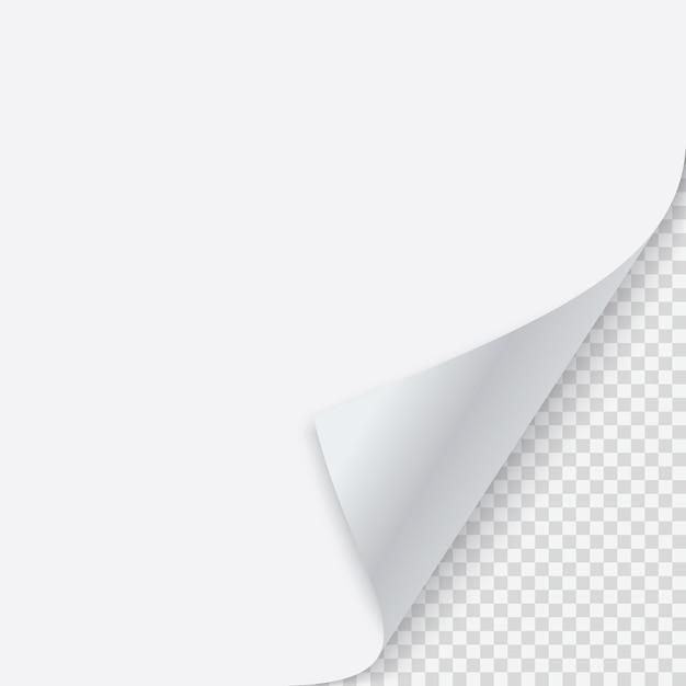 Gekräuselte papierecke mit schatten Premium Vektoren