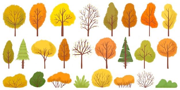 Gelbe herbstbäume. bunter gartenbaum, herbstlicher gartenbusch und herbstjahresbaumlaubillustrationssatz Premium Vektoren