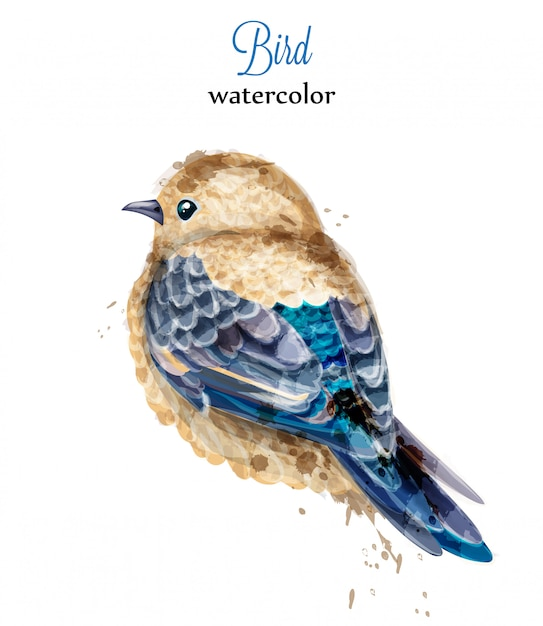 Gemalte artillustration des aquarells vogel Premium Vektoren