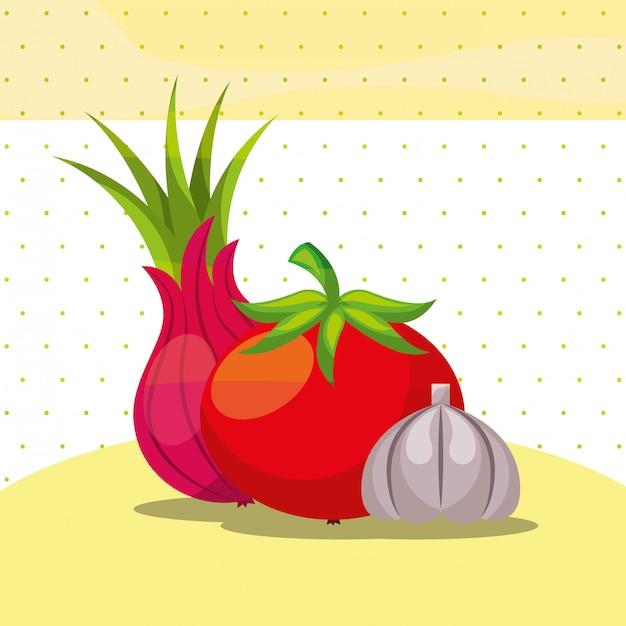 Gemüse frische organische gesunde zwiebel tomaten knoblauch Premium Vektoren