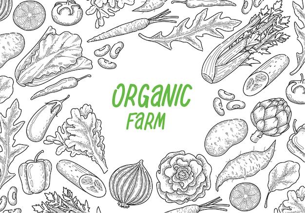 Gemüsehintergrund des handabgehobenen betrages Premium Vektoren