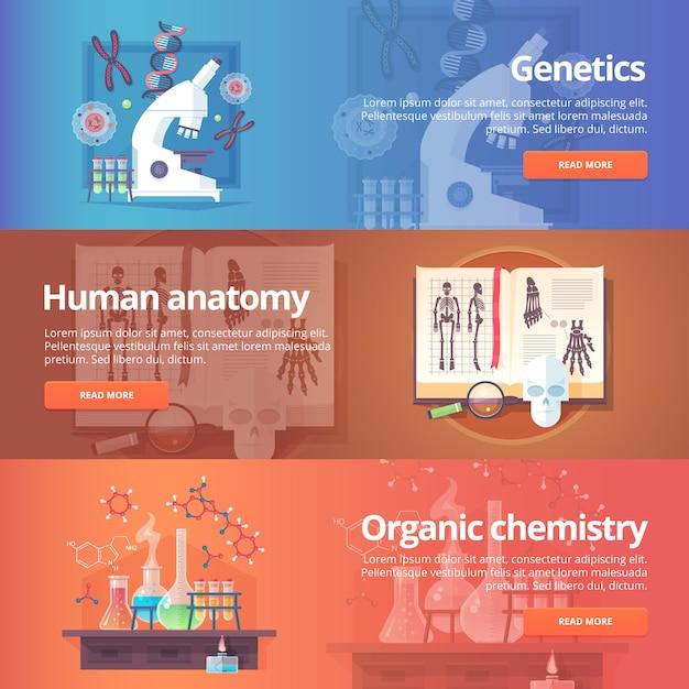 Genetik. menschliches genom. menschliche anatomie. anatomischer atlas. organische chemie. biochemie. chemielabor. wissenschaft vom leben. bildungs- und wissenschaftsbanner gesetzt. konzept. Premium Vektoren