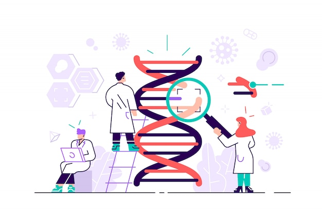 Genetisches dna-wissenschaftsillustrationskonzept. zeigt eine gruppe von wissenschaftlern, die dna untersuchen und für zielseite, benutzeroberfläche, web, app-intro-karte, editorial, flyer und banner geeignet sind. flacher stil Premium Vektoren