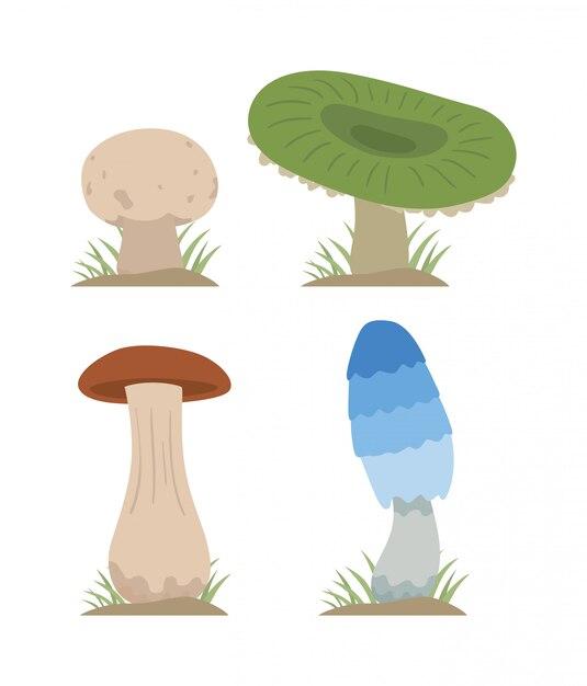 Gesetzte verschiedene arten der pilzvektor-illustration lokalisiert Premium Vektoren