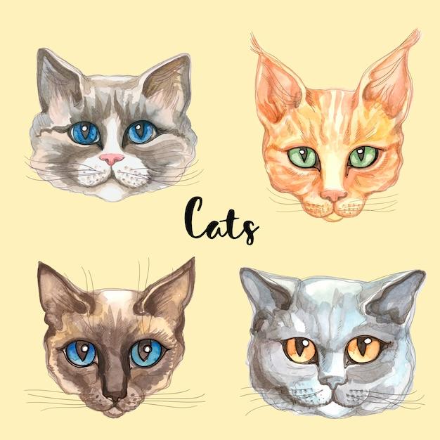 Gesichter von katzen verschiedener rassen Premium Vektoren
