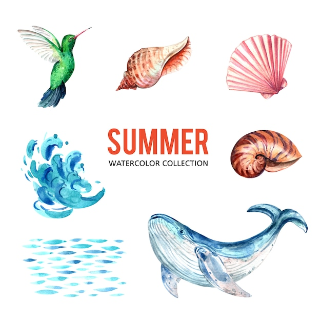 Gestaltungselement mit aquarell, kreative sealife thema-vektorillustration. Kostenlosen Vektoren