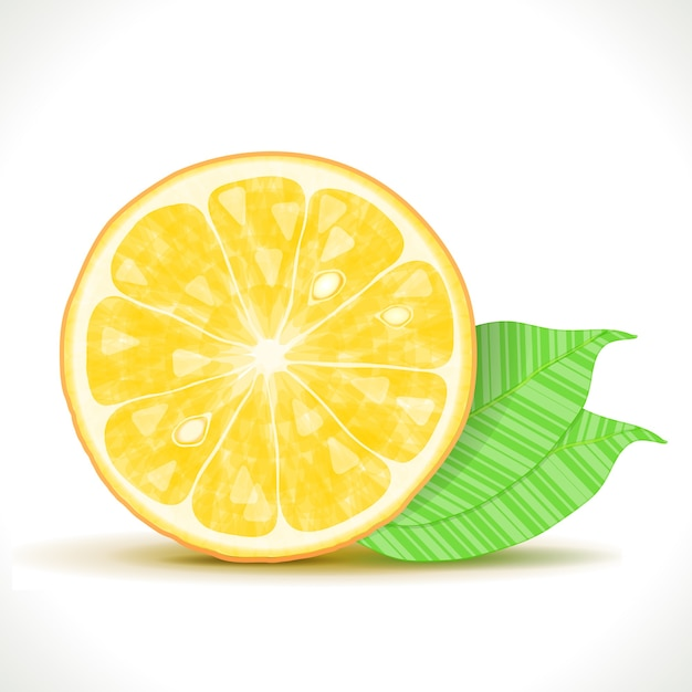 Gestylte orangenscheibe isoliert Kostenlosen Vektoren
