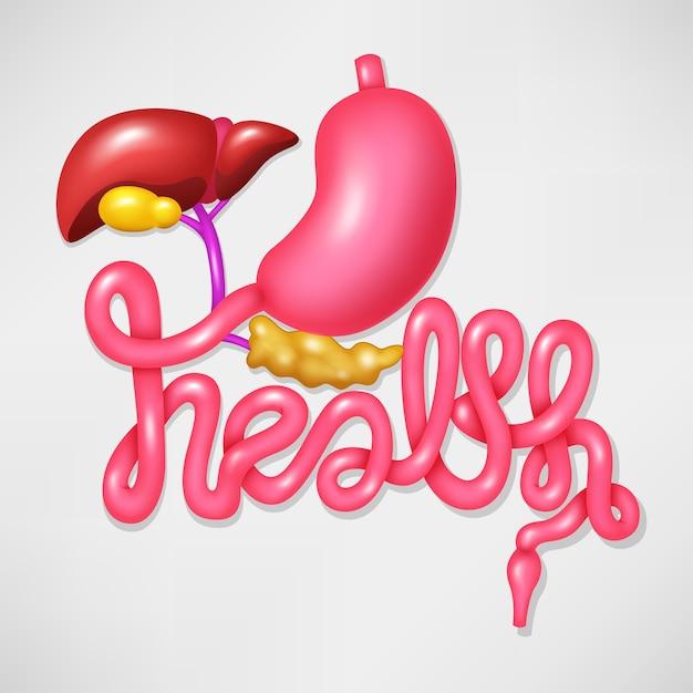 Gesundheitskampagnensymbol-menschliches verdauungssystem Premium Vektoren