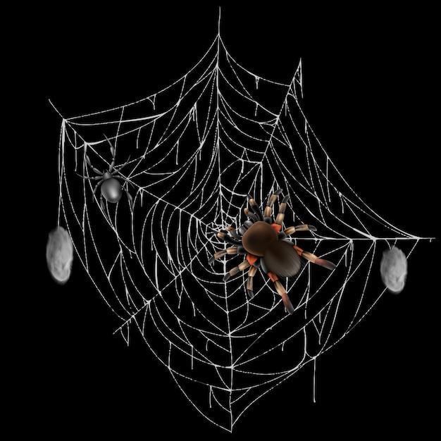 Giftige spinnen auf netzspitze mit gejagter und eingewickelter realistischer vektor der opfer 3d lokalisiert auf schwarzem ba Kostenlosen Vektoren