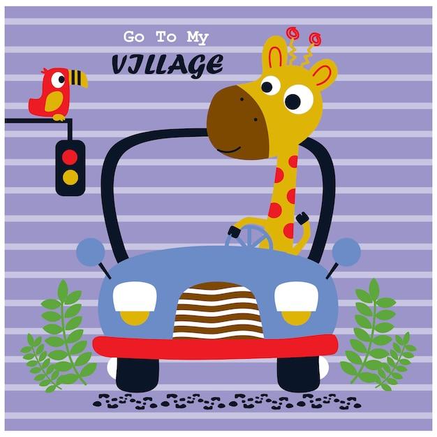 Giraffenautofahren, lustige tierkarikatur, vektorillustration Premium Vektoren