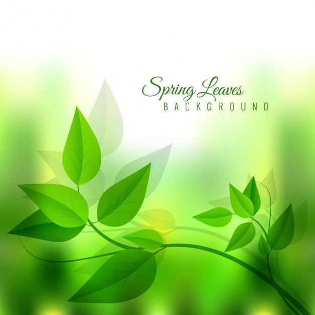 Glänzende grüne blätter frühjahr hintergrund Kostenlosen Vektoren