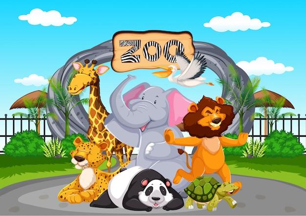 Glückliche tiere im zoo Kostenlosen Vektoren