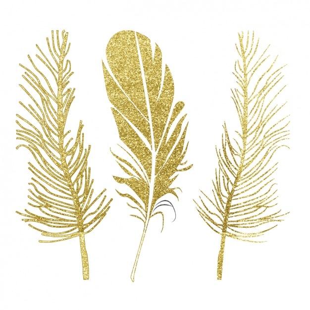 Goldene Federn Design Download Der Kostenlosen Vektor