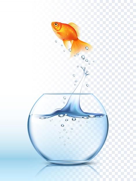 Goldene fische, die heraus schüsselplakat springen Premium Vektoren