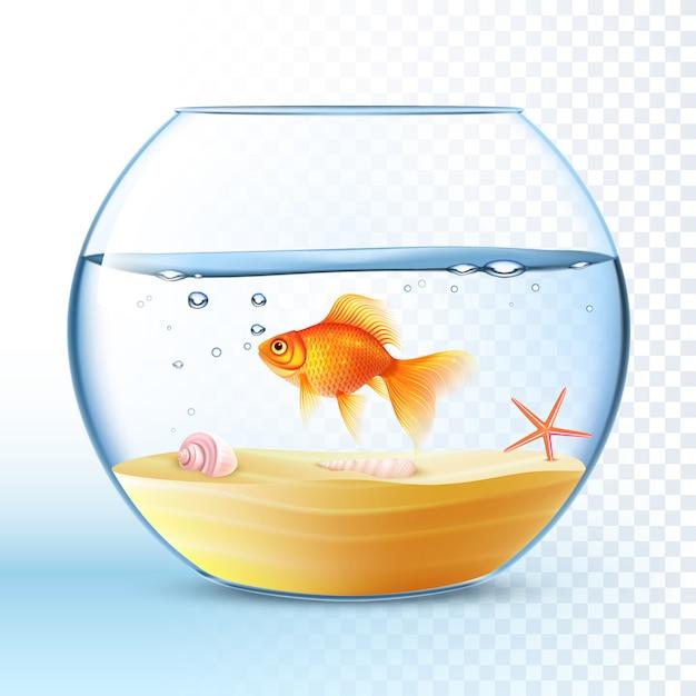 Goldener fisch im runden schüssel-plakat Kostenlosen Vektoren