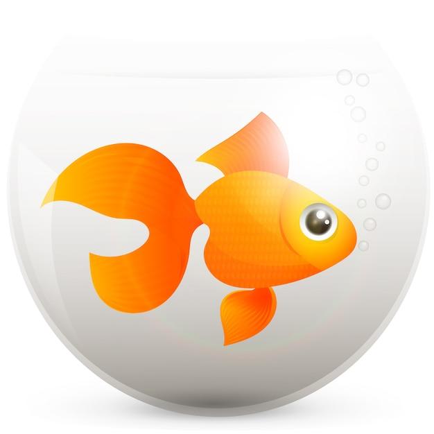 Goldfisch in einem goldfischglas Premium Vektoren