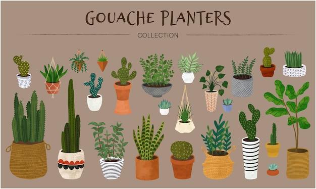 Gouache pflanzer sammlung Premium Vektoren