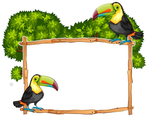 Grenzschablone mit zwei tukanvögeln Kostenlosen Vektoren