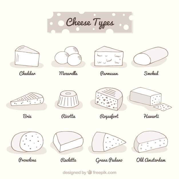Große auswahl an deferent käsesorten Kostenlosen Vektoren