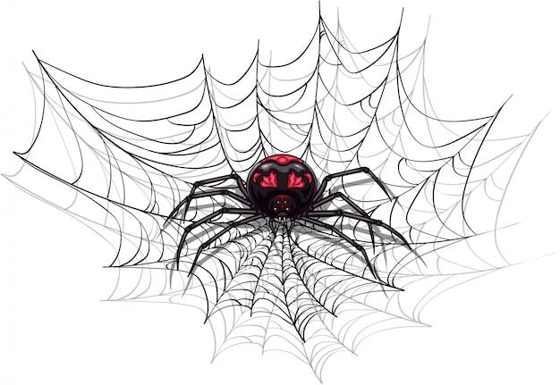 Große beängstigende spinne für halloween-design. Premium Vektoren